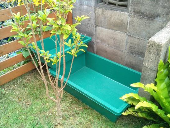 庭に池を仮置き