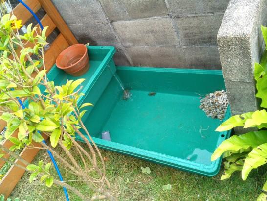 予算5000円で作る庭池
