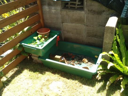 予算5000円で庭に作る手作りの池