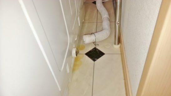 洗濯機の排水ホースを外した