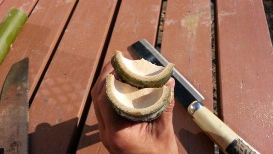 割れた竹の横側