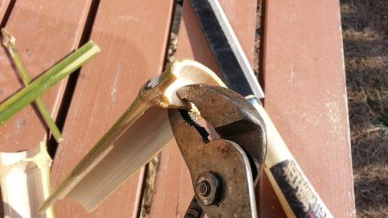 ペンチで竹の節を折り取る