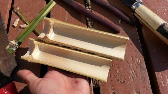 節を折り取った後の竹