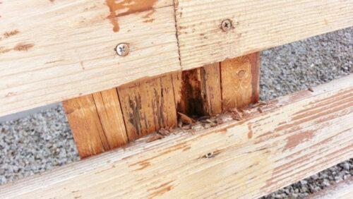 【DIYメンテナンス】腐ったウッドフェンスの補修修理
